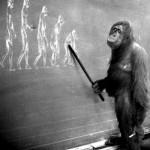 Нравственность эволюционное приспособление – ответ на контраргумент