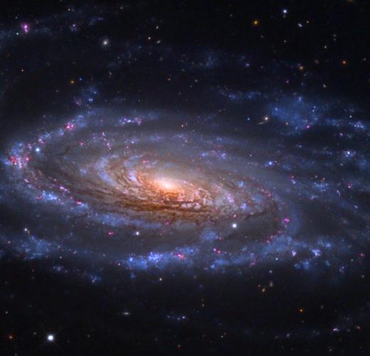 Откуда взялась Вселенная